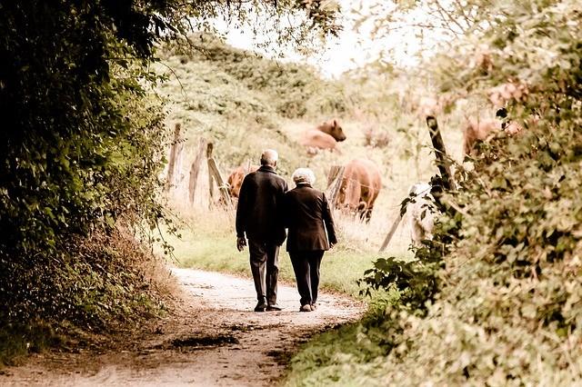 Resultado de imagen de jubilacion autonomo plan pensiones